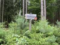 Fichtelgebirge Bad Alexandersbad 6.JPG